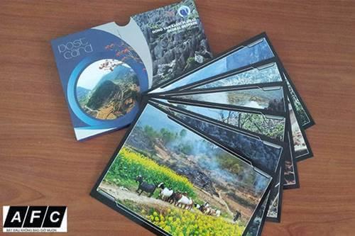 Dịch vụ In Poster Card đẹp giá rẻ tại Phú Quốc